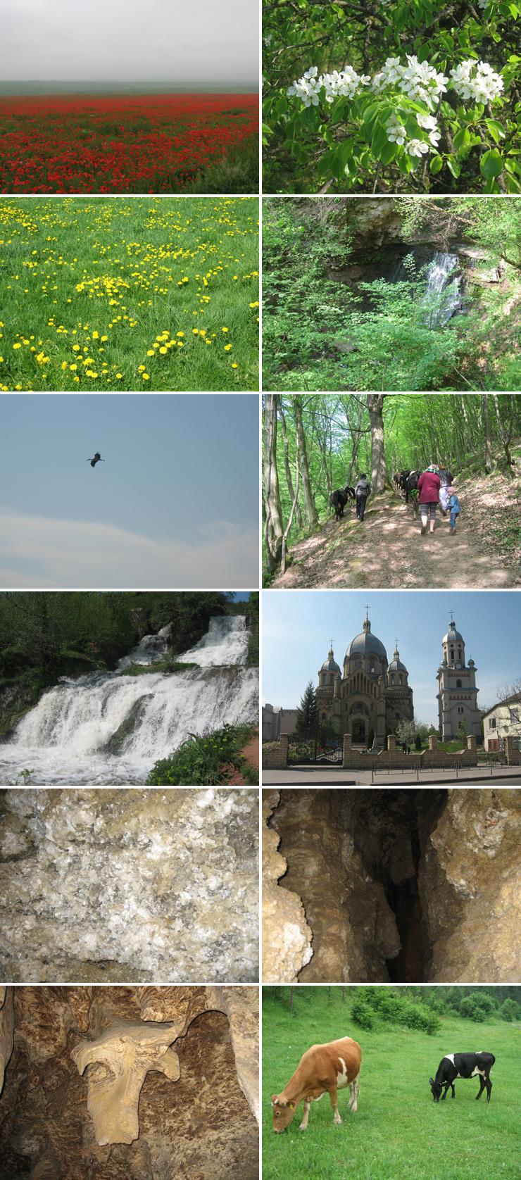 туры по Украине, автобусные туры, по Украине, из Украины, тур по западной Украине